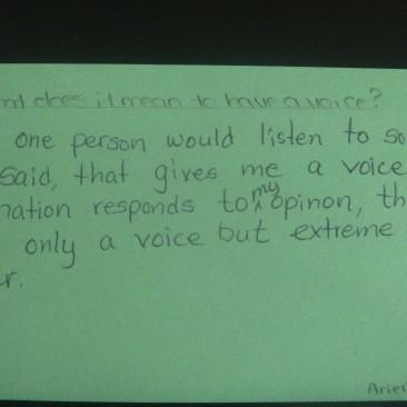 Community Voice Survey
